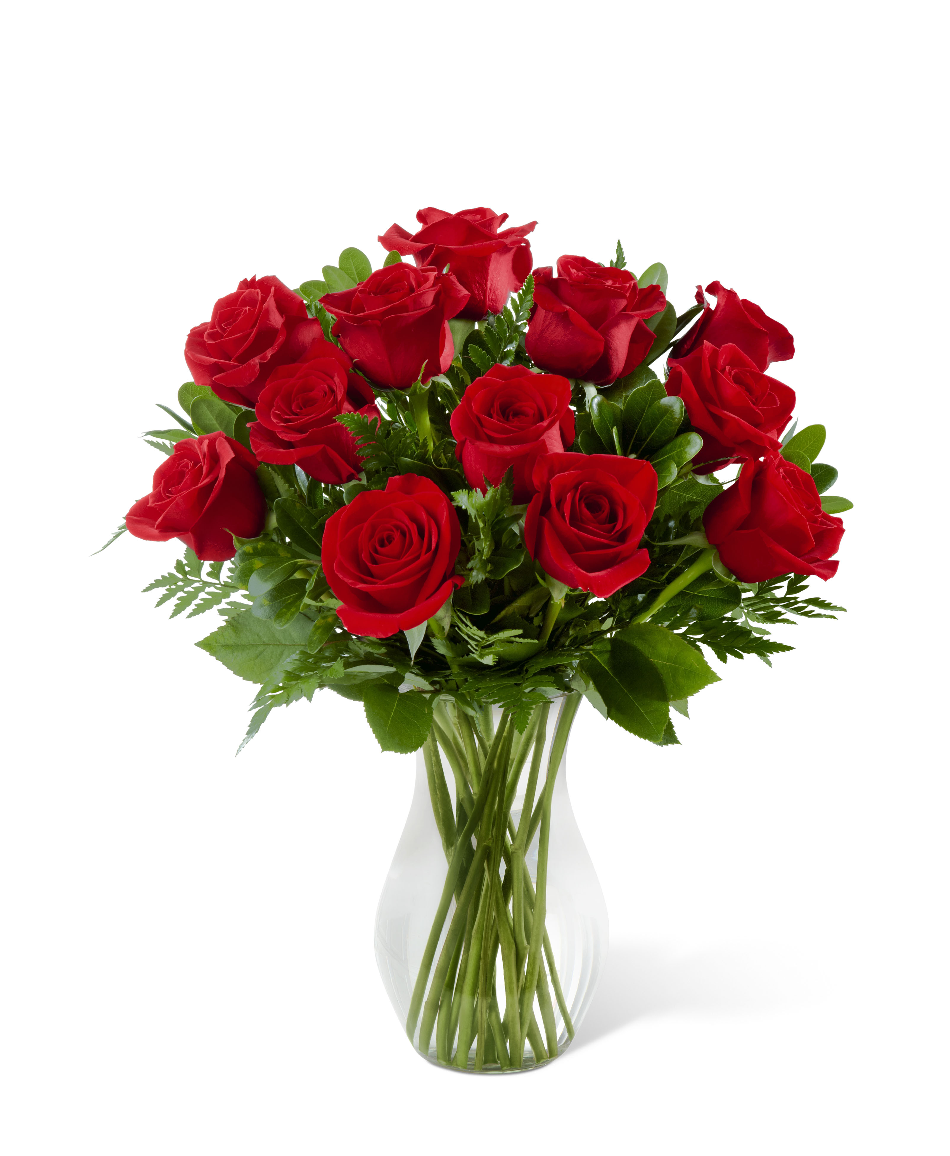 February flowers by abigail lucy the ultmate flower of love roses are one of the worlds most brought flowers perfect february flower symbolising valentines day and representing beauty izmirmasajfo Images